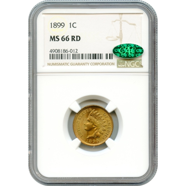1899 1C Indian Head Cent NGC MS66RD (CAC) from an original roll-!